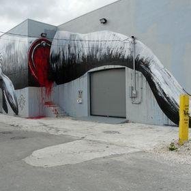 Roa in Miami